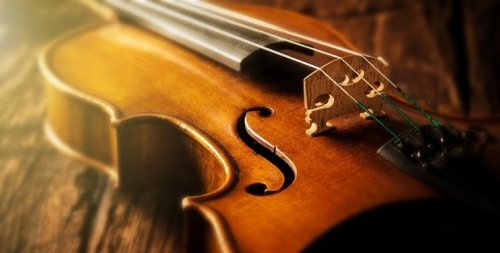 Violin and String Lessons in Jenison